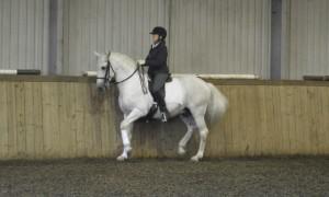 Clinic - Keep it Classical @ Water Farm | Raydon | England | United Kingdom